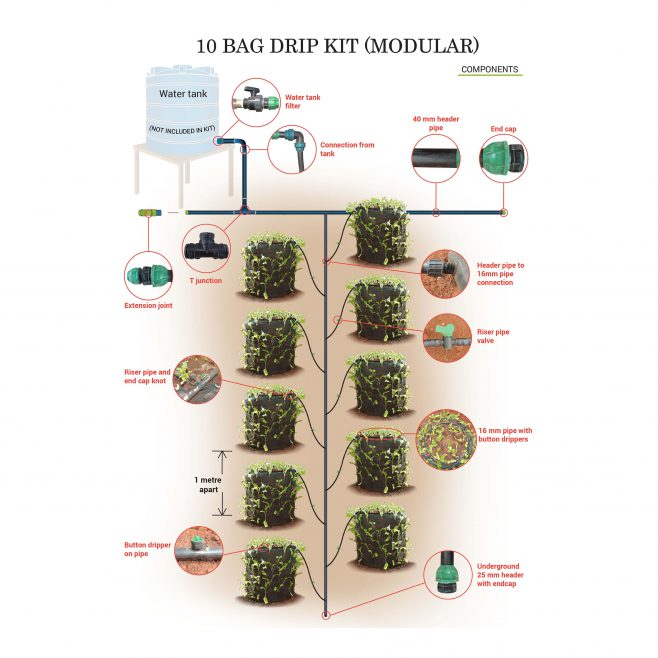 10 Bags Drip Kit (With Bags)