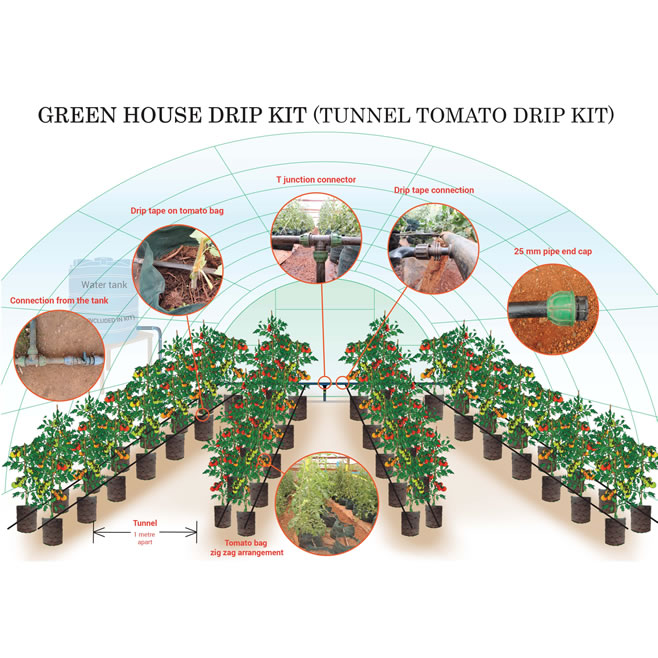 Green House Tomato Drip Kit (Without bags)